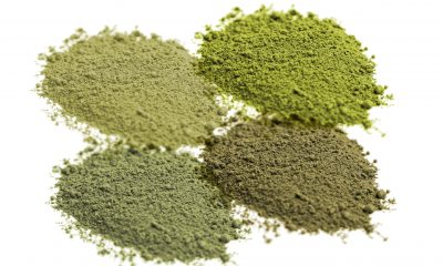 Kratom Strains Effects Dosage
